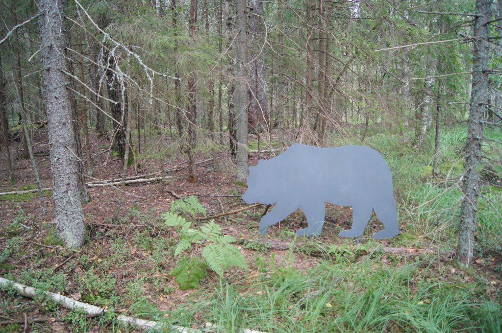"На экотропе ""В царстве бурого медведя"""