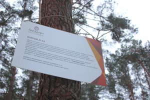 Информационная табличка на Гнёздовских курганах
