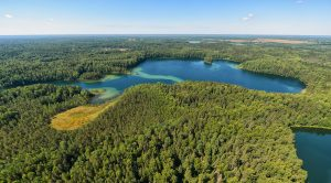 Смоленское Поозерье - лучшее эконаправление Смоленской области