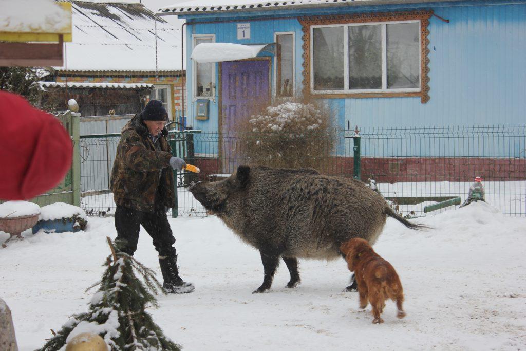 Кабаниха Машка. Фото: Ольга Ефимкина