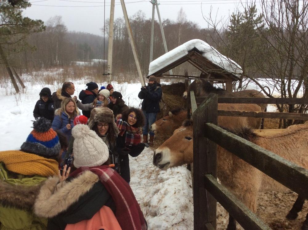 Ребят из Туниса покатали на лошадках (но не Пржевальского) в Поозерье /Фото: smolensk-guide.com
